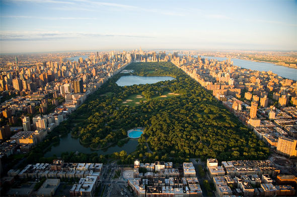 Fall Wallpaper With Verse Central Park Lampposts The Secret Map Code You Never You