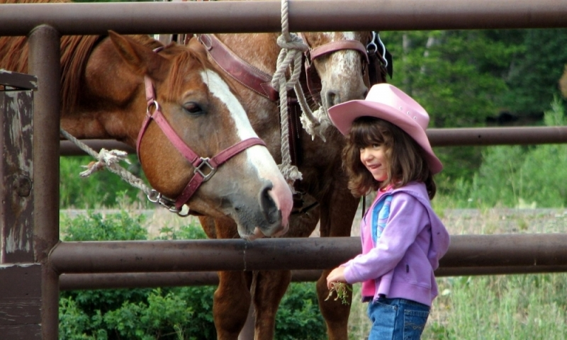 Things To Do In Jackson Hole Wyoming With Kids Alltrips