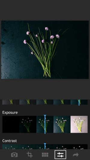 iOS限免、限時免費軟體app遊戲-Fotograf 2