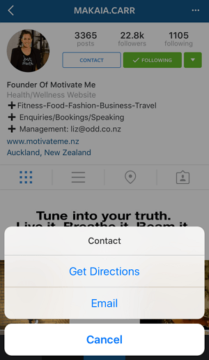 Instagram Business Profiles (4)