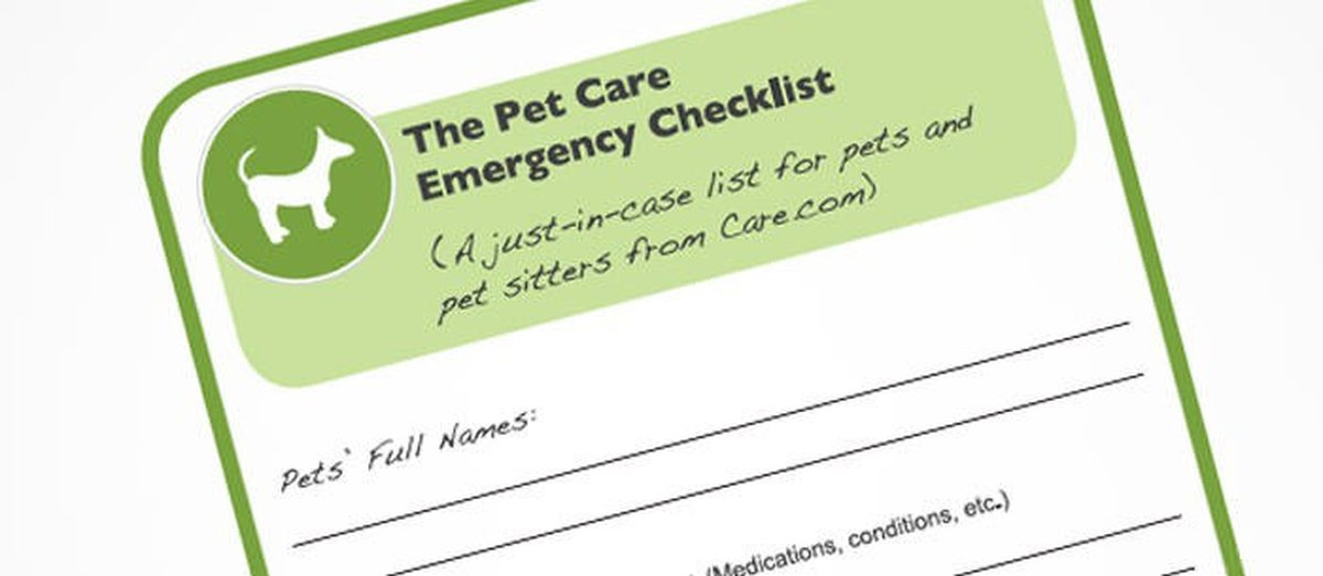 The Pet Sitter Safety Checklist - Care