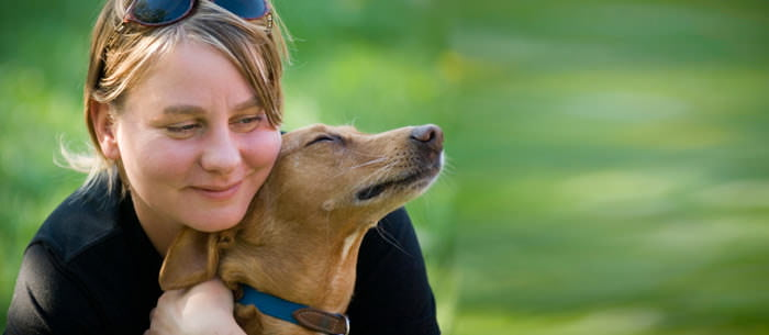 How To Interview A Pet Sitter - Care
