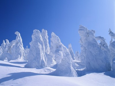 field ice winter can we have some nice winter pictures 1600x1200 wallpaper High Quality ...