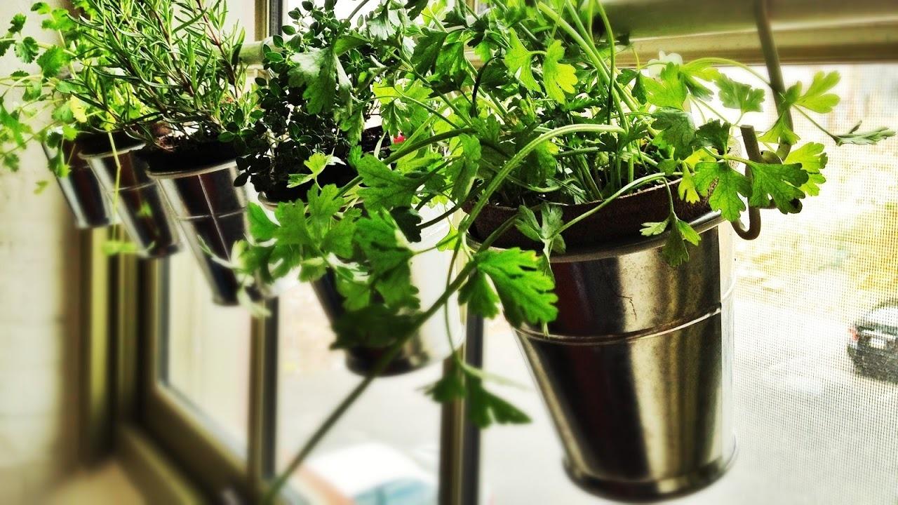 Bodacious Ideas To Use When Creating Garden Create An Garden Creating An Garden garden Creating An Indoor Garden