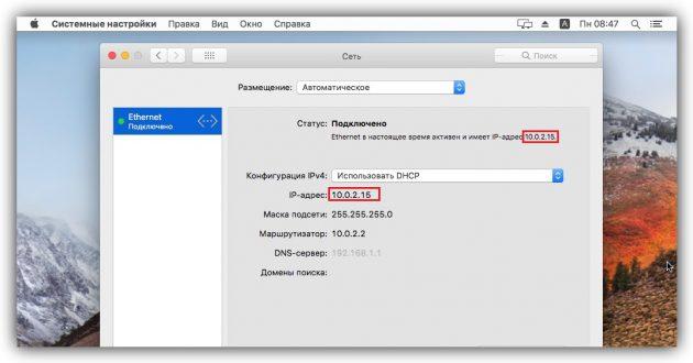 Как узнать IP-адрес в macOS