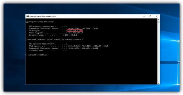 Как узнать IP-адрес в Windows