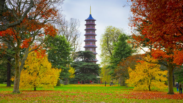 Late Fall Desktop Wallpaper Things To Do In London In October 2018 Visitlondon Com