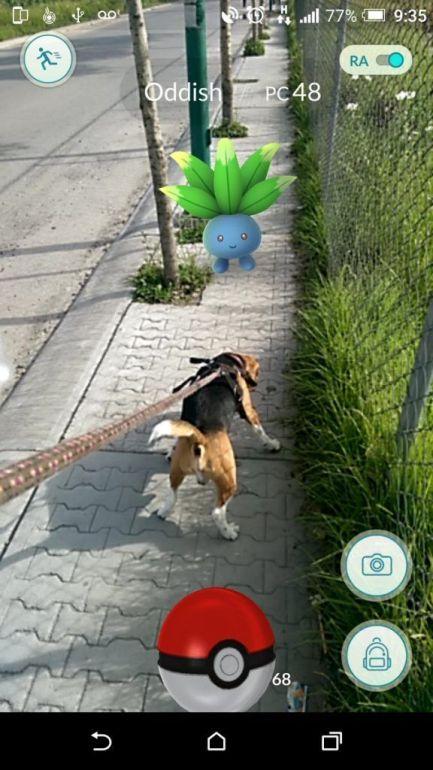 Pokémon GO. Foto de @ecentenomtz
