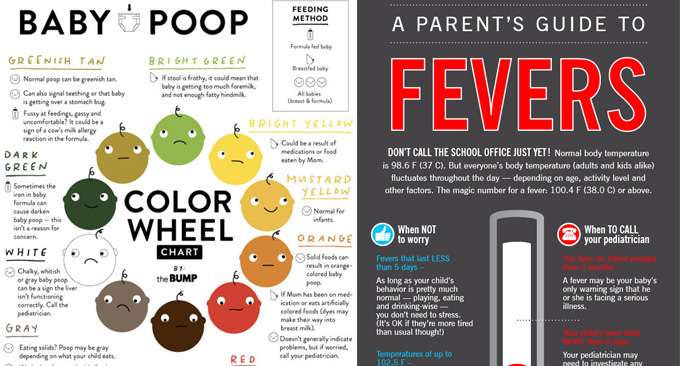 62 Inspirational Gallery Of Dog Poop Color Chart Reading