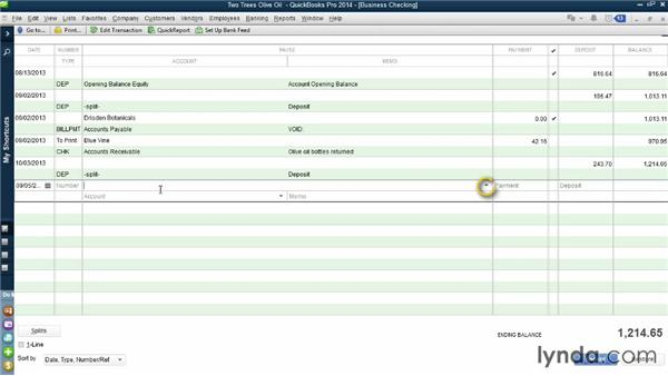Working with check registers manually