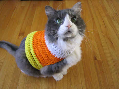 crochetcandycornkitty.jpg
