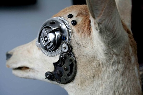 taxidermy_steampunk.jpg
