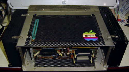 homemade_appleIIcase.jpg
