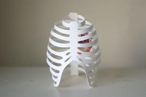 paperribcage.jpg