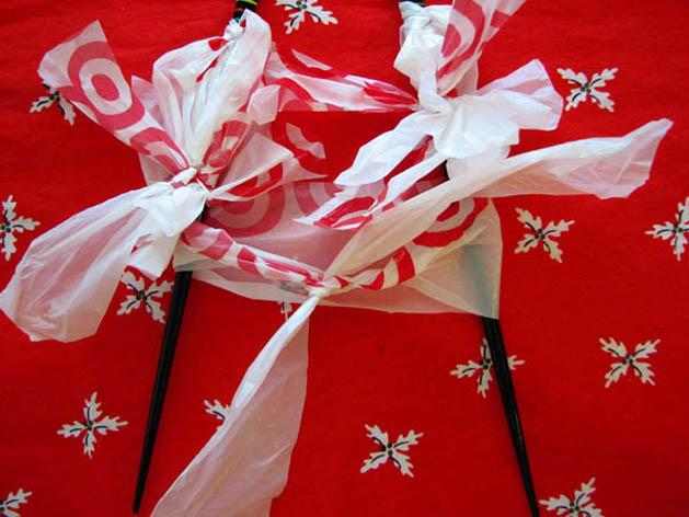 Umbrellatree Step13