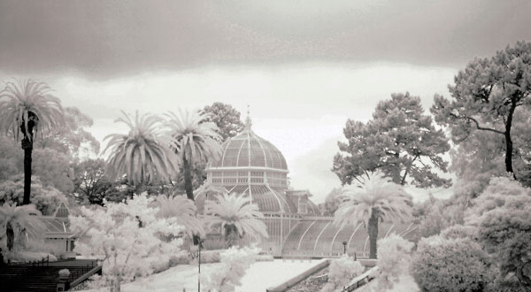 flashback-infrared-greenhouse.jpg
