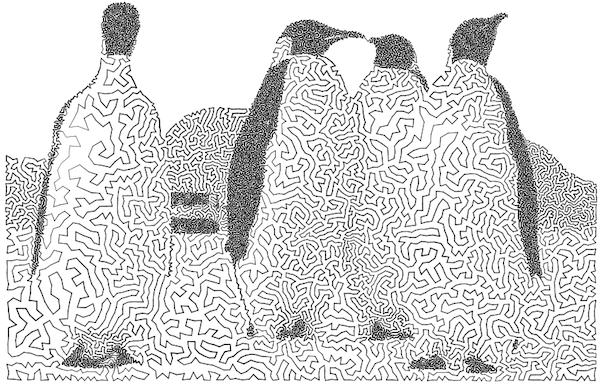 penguins-211.png