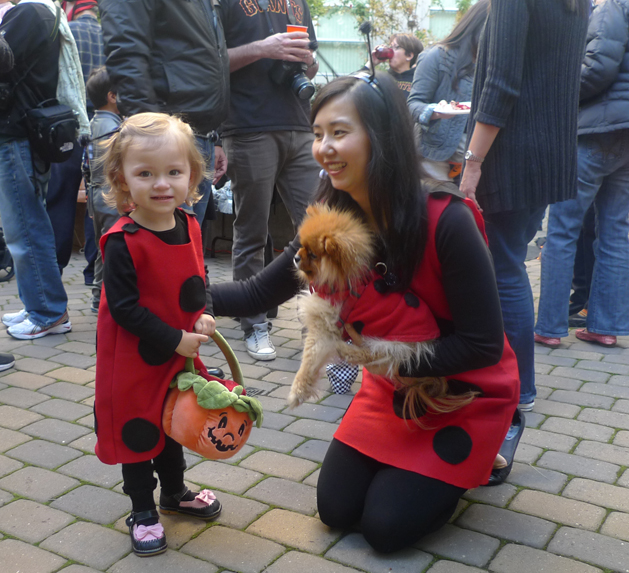 halloween_ladybugs_nat.jpg