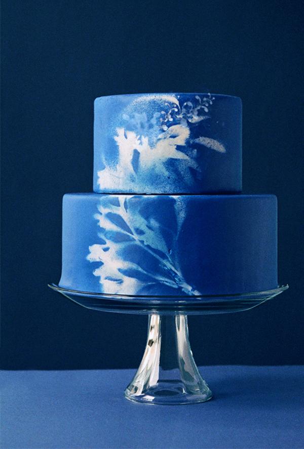 sunprint-cake.jpg