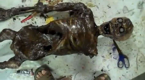 plastic_skeleton_corpse.jpg