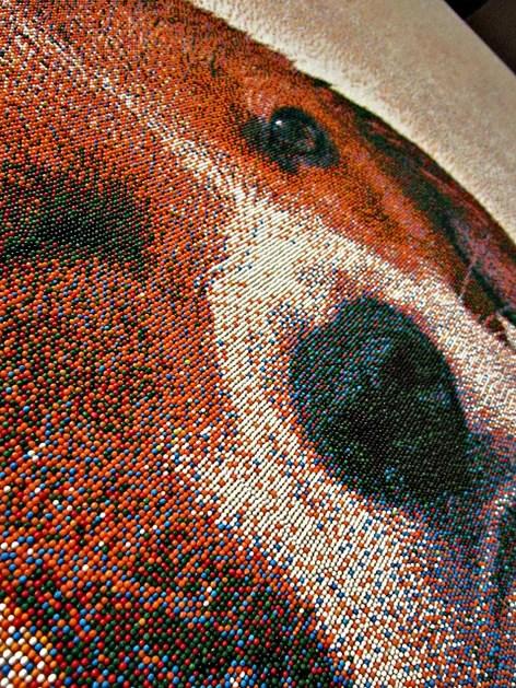 candy_art_dog_closeup1.jpg