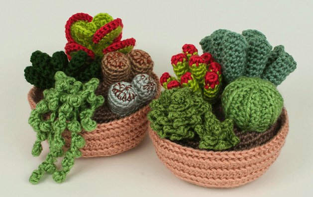 crochet_succulents_from_planet_june.png