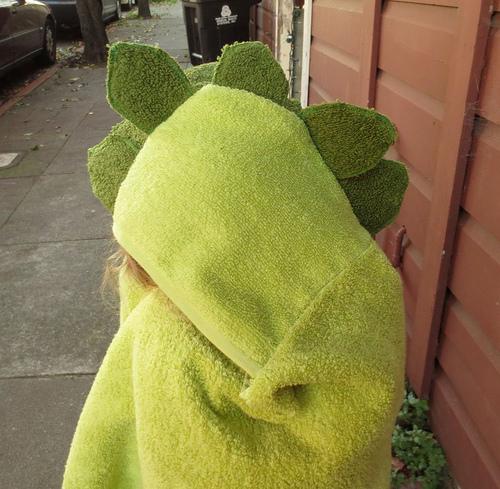 dinosaur_towel