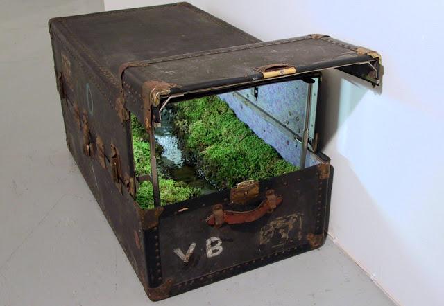 moss-trunk-1