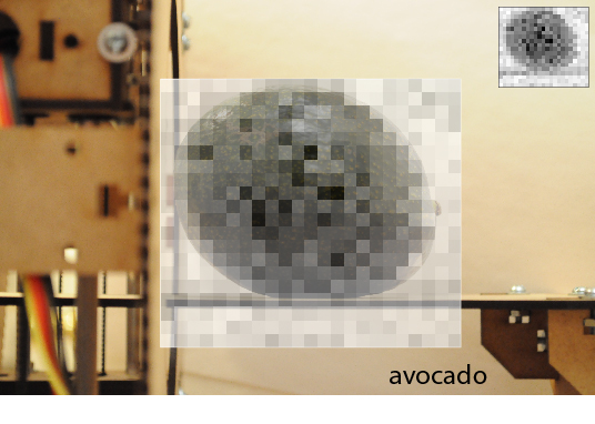 One of the first images from Jansen's scanner: an avocado.