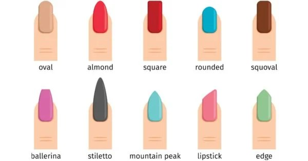 A Complete Guide To Different Nail Shapes From Oval To