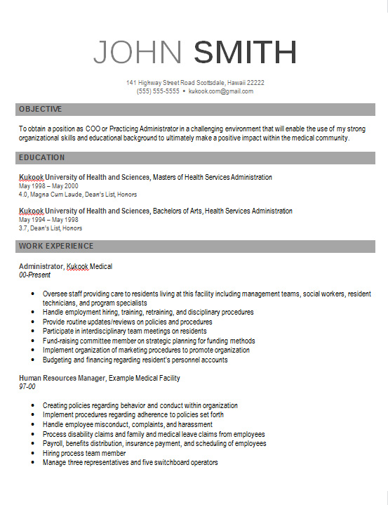 modern executive resume examples - Selol-ink