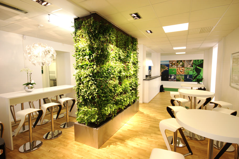 plant screen ideas