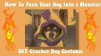 DIY CROCHET DOG HALLOWEEN COSTUME (DRAGON) Part 1, grayzef