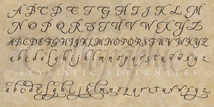 American Calligraphic™ - Webfont  Desktop font « MyFonts