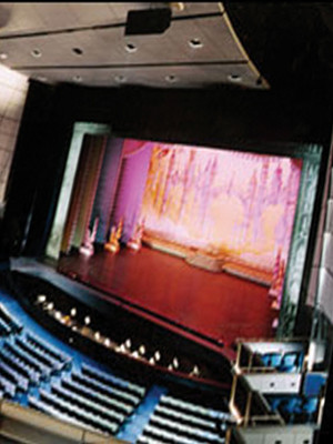 Arie Crown Theater, Chicago, IL - DeRay Davis, Toni Braxton, Tyler