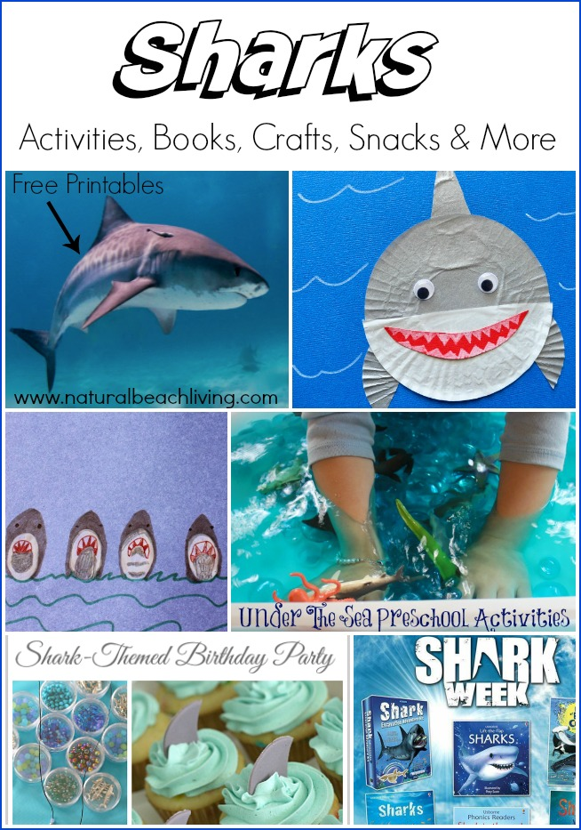 Shark Activities for Kids - Free Shark Printables - Natural Beach Living