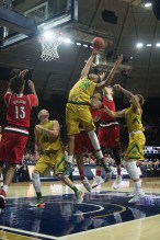 20160213, 20160213, Caitlyn Jordan, Men's Basketball, ND vs Louisville, Purcell Pavilion-5