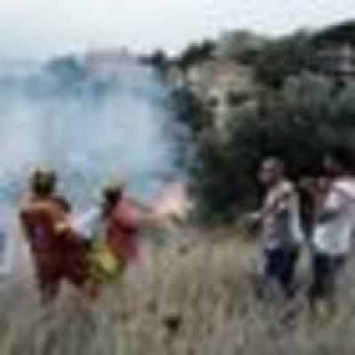 Greek wildfires: Travel advice for visitors to Greece ...