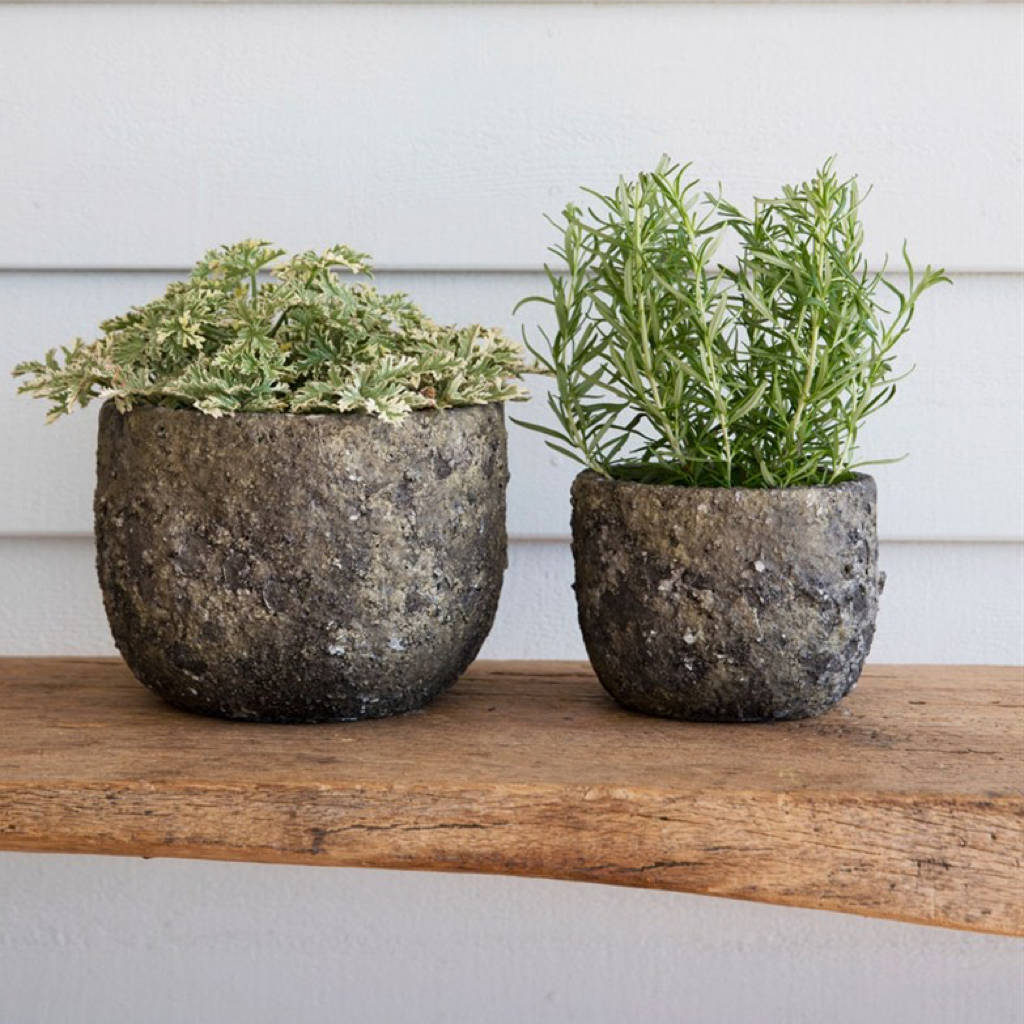 Ceramic Pottery For Plants Plant Pots Ceramic