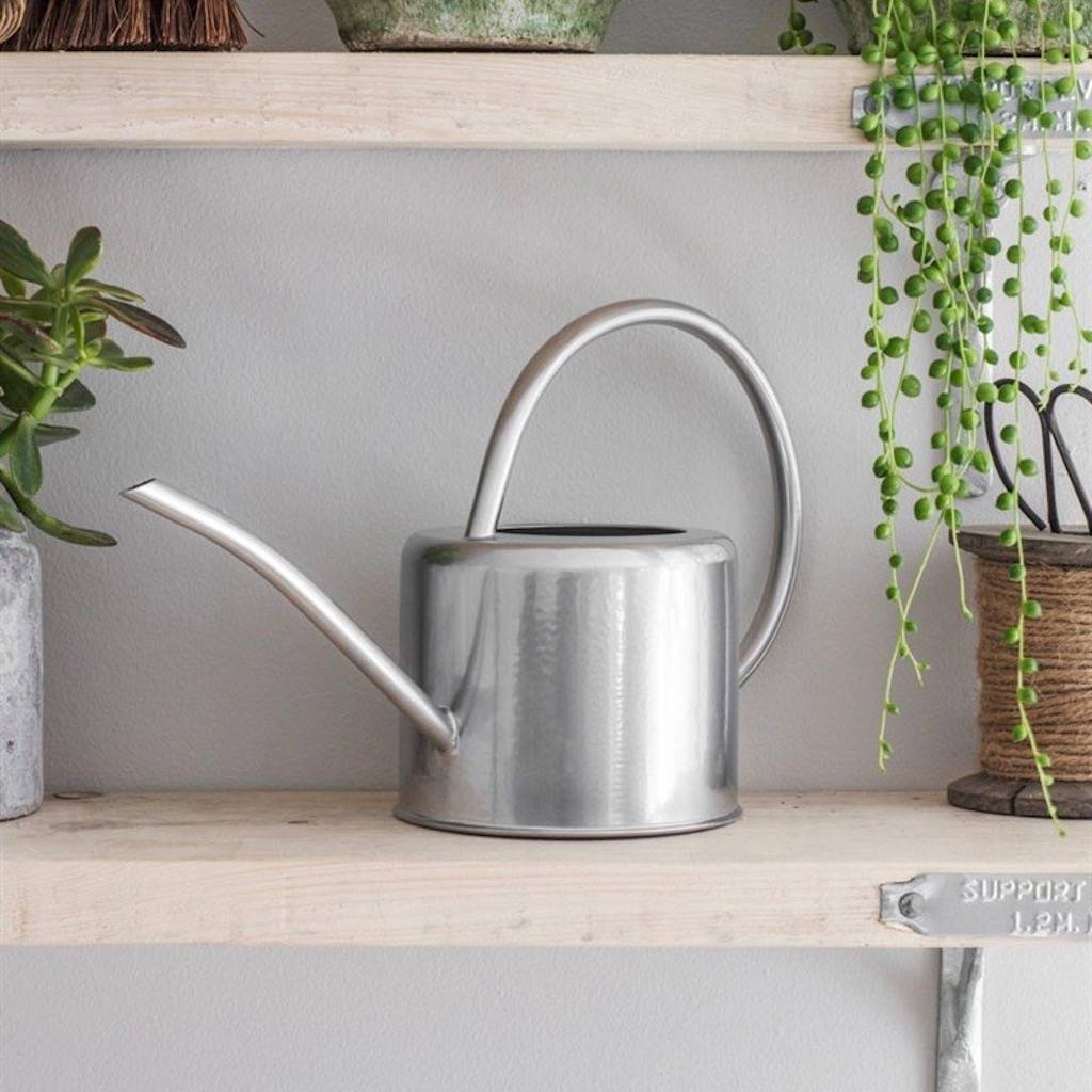 Metal Indoor Watering Can Galvanised Steel Indoor Plant Watering Can By The Forest
