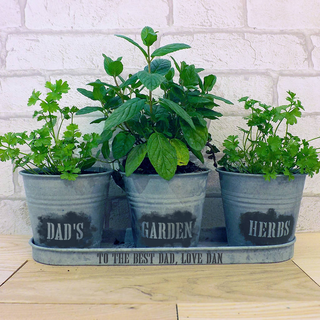Kitchen Herb Pot Personalised Zinc Herb Pots And Tray By Jonny 39s Sister