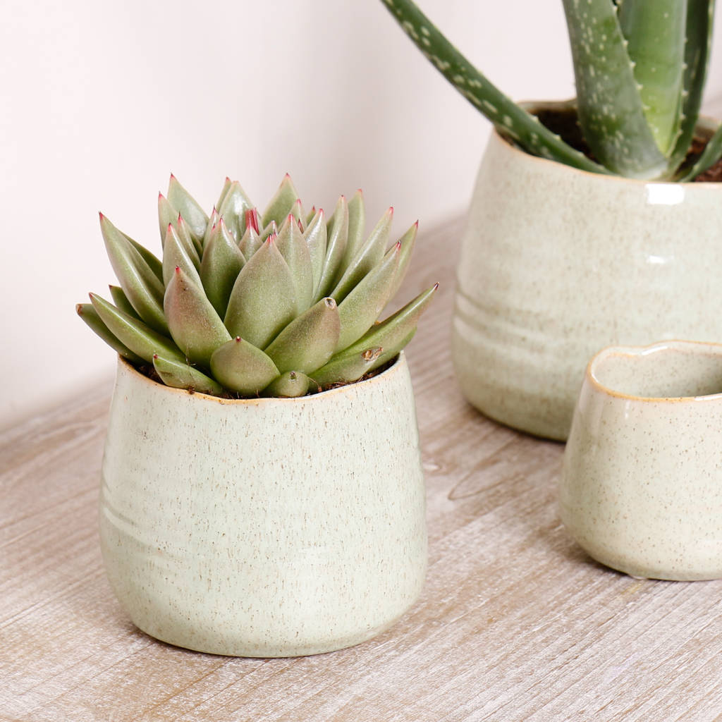 Ceramic Pottery For Plants Potter 39s Wheel Green Ceramic Plant Pots By Dibor