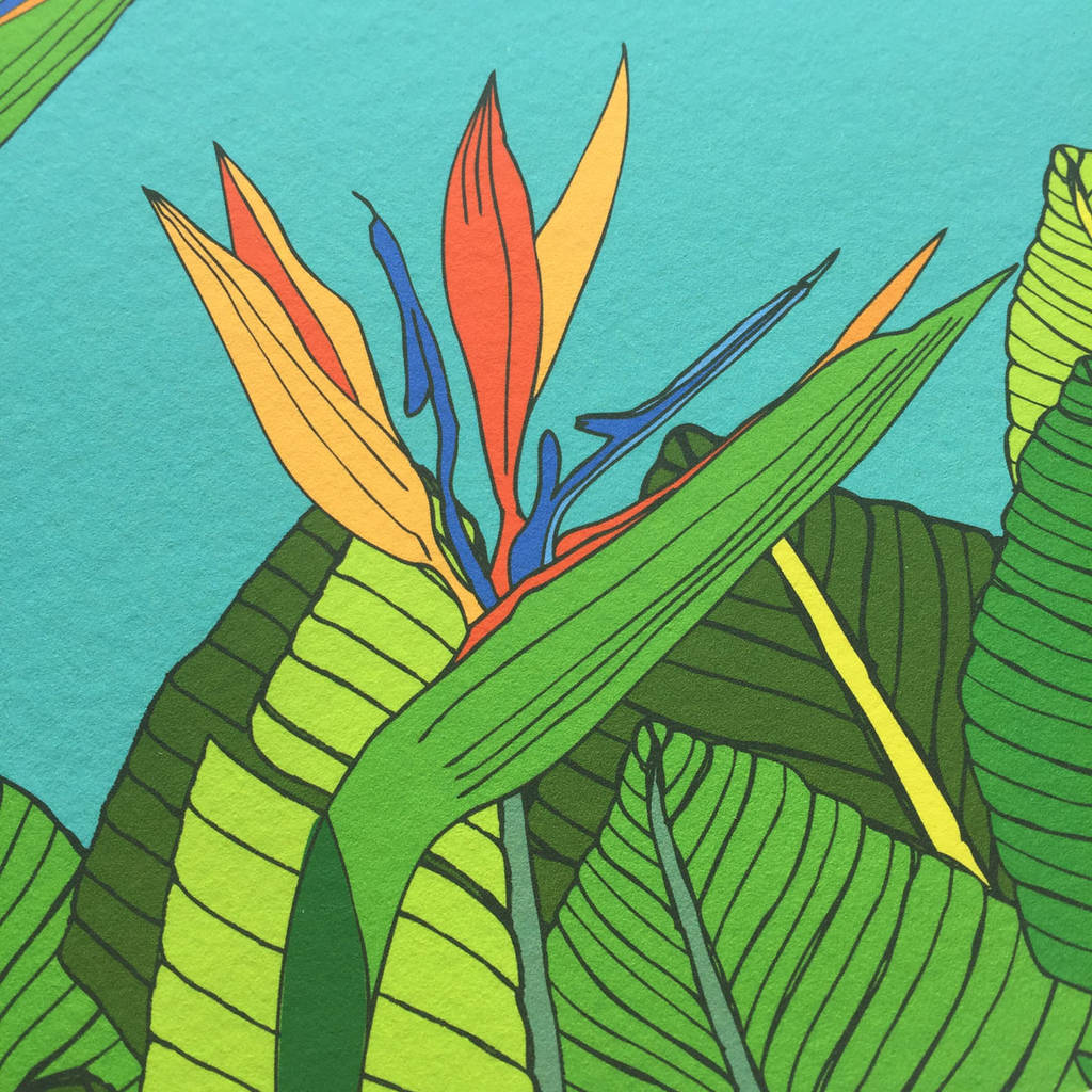 Tropical Artwork Tropical Bird Of Paradise Flower Art Print By Made By Ilze