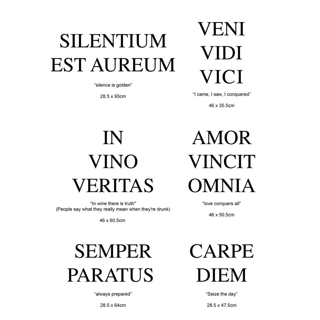 Socrates Wallpaper Quotes Latin Wall Quotes By Nutmeg Notonthehighstreet Com