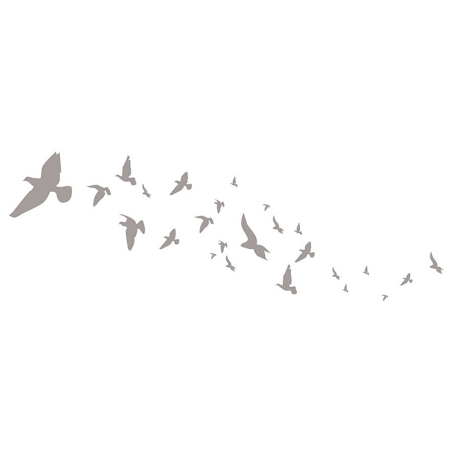 Pink Feathers Falling Wallpaper Flying Birds Wall Stickers By Spin Collective
