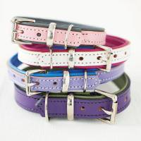 padded leather dog collar by annrees | notonthehighstreet.com