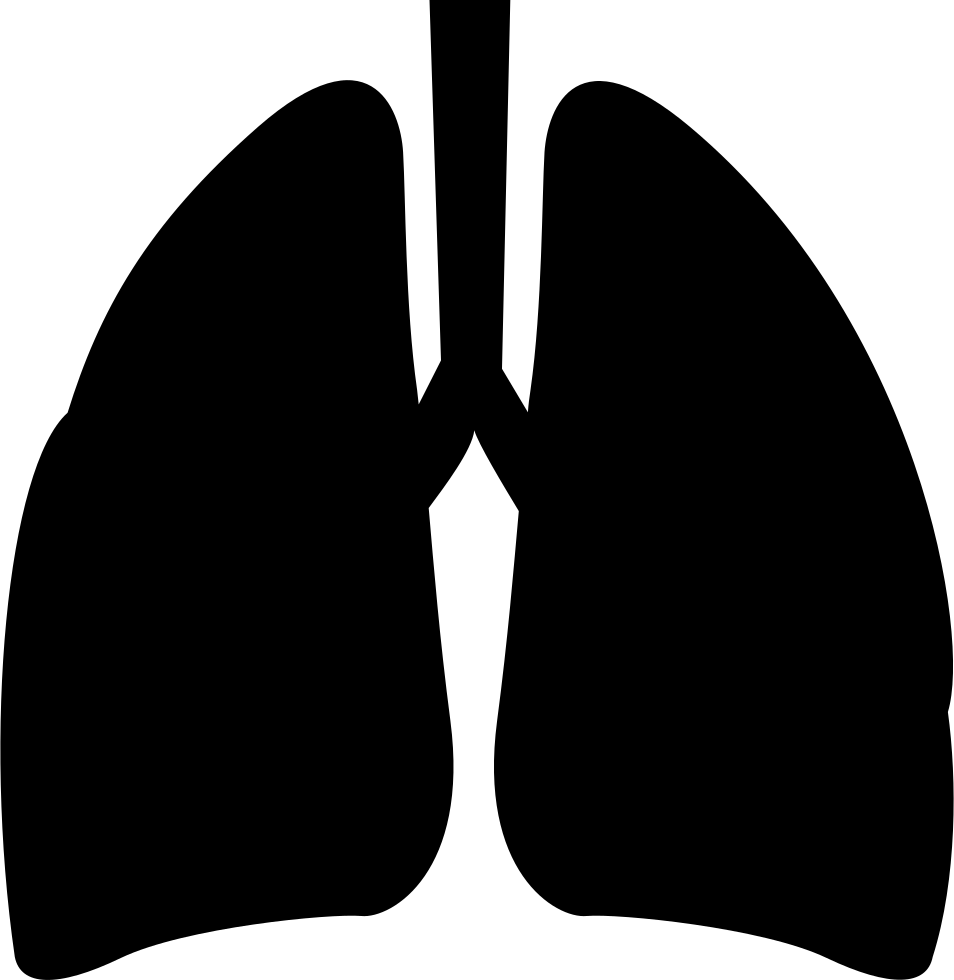 Online Tekenen Lungs Svg Png Icon Free Download (#211965
