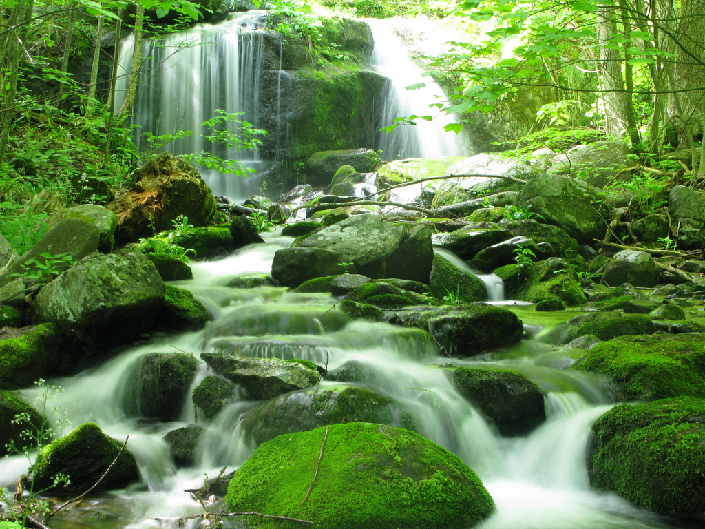 I Love You Boy Girl Wallpaper These 19 Virginia Waterfalls Are Absolutely Breathtaking