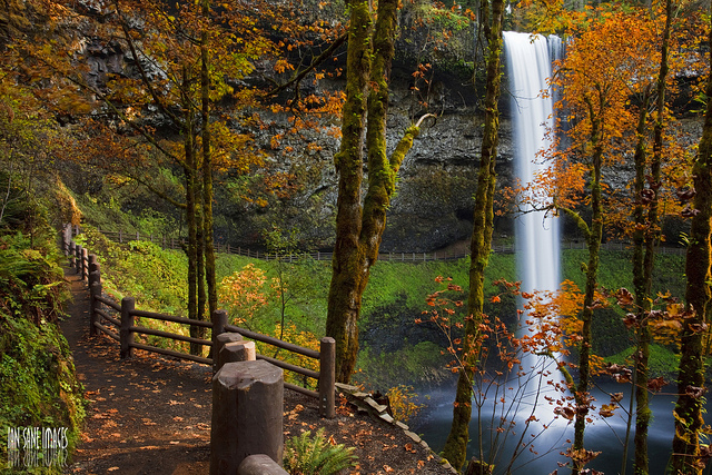 4k Central Park In The Fall Wallpaper 12 Hiking Spots In Oregon That Are Out Of This World