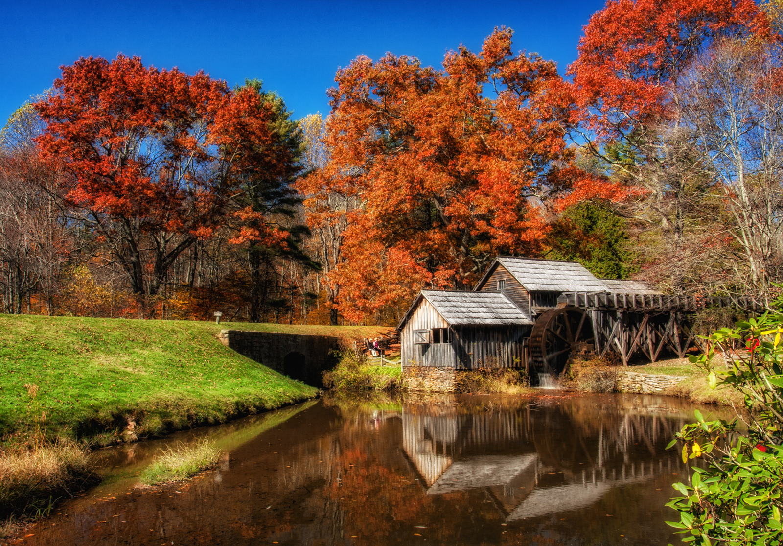 Wallpapers For Desktop Fall Colors 18 Things You May Not Expect When Moving To Virginia